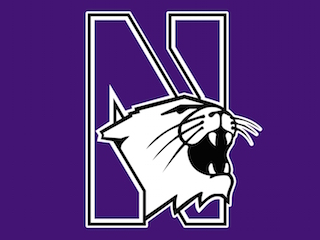 Northwestern University's MS in Information Design and Strategy