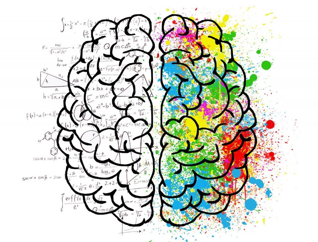 Illustration showing two halves of a brain showing a concept of rational versus emotional sides.